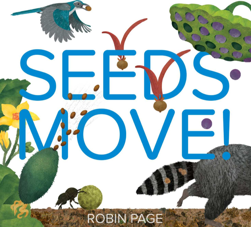 Teaching Ideas for 'Seeds Move!'